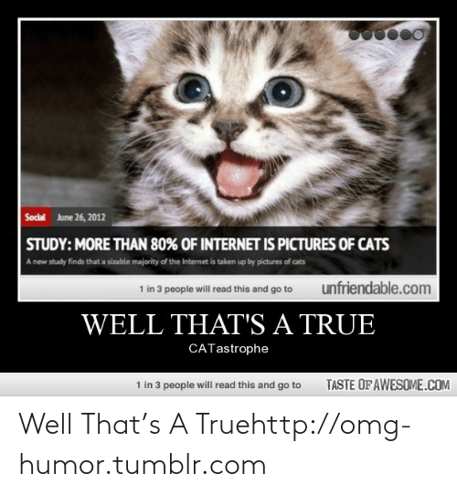 June 26: June 26, 2012  Social  STUDY: MORE THAN 80% OF INTERNET IS PICTURES OF CATS  A new study finds that a sizable majority of the Internet is taken up by pictures of cats  1 in 3 people will read this and go to  unfriendable.com  WELL THAT'S A TRUE  CATastrophe  1 in 3 people will read this and go to  TASTE OF AWESOME.COM Well That's A Truehttp://omg-humor.tumblr.com