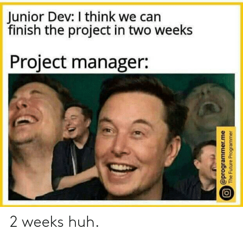 Future, Huh, and Dev: Junior Dev: I think we can  finish the project in two weeks  Project manager:  @programmer.me  The Future Programmer 2 weeks huh.