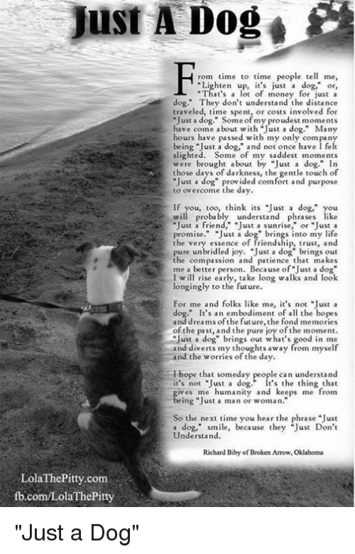 "overcomer: Just A Dog  rom time to time people tell me,  ten up, it's just a dog,"" or  at's a lot of money for just a  dog."" They don't understand the distance  traveled, time spent, involved for  dog of my have come about with Just a dog  Many  hours have passed with my only company  ust a dog,"" and not once have l felt  being ""J  slighted. Some of my saddest moments  were brought about by ""Just a dog."" In  those days of darkness, the gentle touch of  ""Just a dog"" provided comfort and purpose  to overcome the day  If you, too, think its ust a dog,"" you  probabl  understand phrases  ust a sunrise.  or ""Just a  pure unbridled joy. J  ust a dog brings out  the compassion and patience that makes  me a better person. Because of ""Just a dog""  I will rise early, take long walks and look  longingly to the future.  For me and folks like me, it's not  Just a  dog."" It's an embodiment of a  the hopes  dreams of the future, the fond memories  of the the joy ofthe Just a dog brings out what's good in me  and diverts my thoughts away from myself  nd the worries of the day  Thope that someday people can understand  it's not ""Just a dog."" It's the thing that  d keeps me from  ing Just a man or woman.  So the next time you hear the phrase ""Just  a dog,"" smile, because they ""Just Don't  Understand.  Richard Biby of Broken Arrow, Oklahoma  Lola ThePitty.com  fb.com/Lola The Pitty ""Just a Dog"""