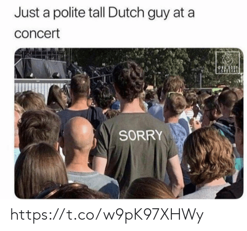 Memes, Sorry, and Dutch Language: Just a polite tall Dutch guy at a  concert  ON80DY  SPECIAL  SORRY https://t.co/w9pK97XHWy