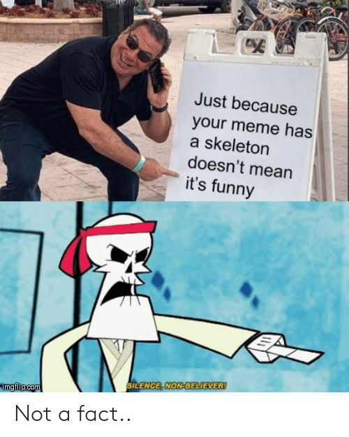 Your Meme: Just because  your meme has  a skeleton  doesn't mean  it's funny  SILENCE, NON-BELIEVER!  imgflip.com Not a fact..