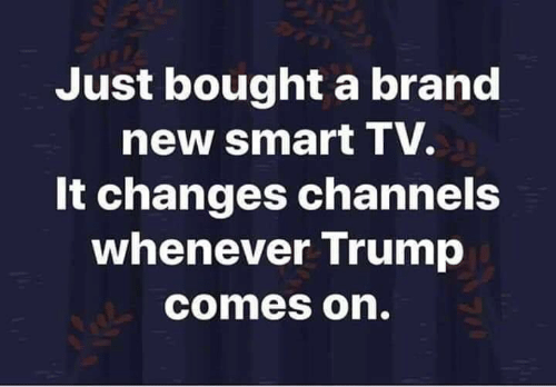 Memes, Trump, and Brand New: Just bought a brand  new smart TV.  It changes channels  whenever Trump  comes on.  7/4