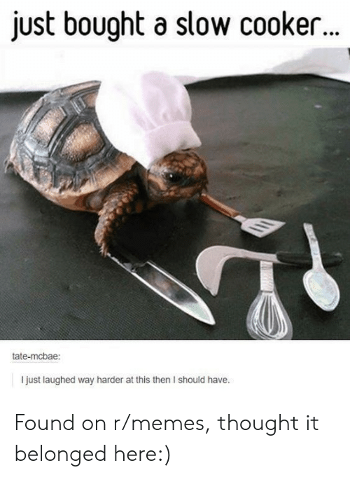 Memes, Thought, and Slow Cooker: just bought a slow cooker..  tate-mcbae:  I just laughed way harder at this then I should have. Found on r/memes, thought it belonged here:)