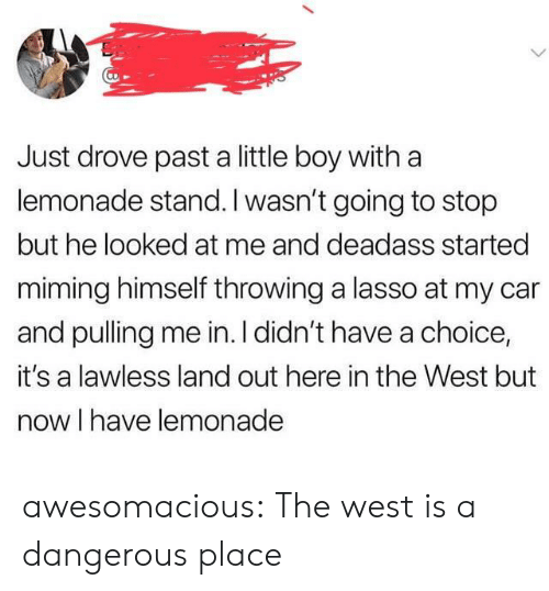 lawless: Just drove past a little boy with a  lemonade stand. I wasn't going to stop  but he looked at me and deadass started  miming himself throwing a lasso at my car  and pulling me in. I didn't have a choice,  it's a lawless land out here in the West but  now I have lemonade awesomacious:  The west is a dangerous place