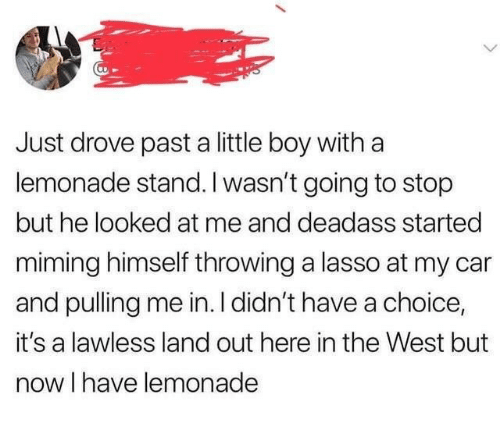 Lemonade: Just drove past a little boy with a  lemonade stand. I wasn't going to stop  but he looked at me and deadass started  miming himself throwing a lasso at my car  and pulling me in. I didn't have a choice,  it's a lawless land out here in the West but  now I have lemonade