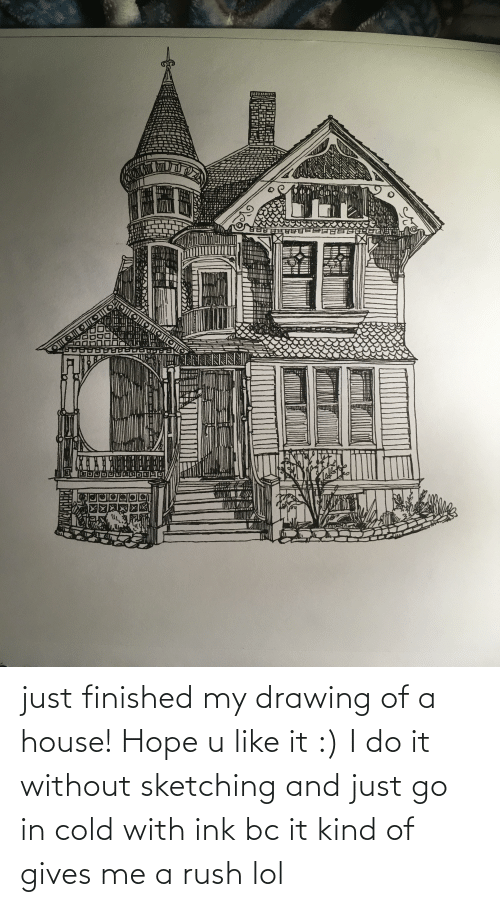 Cold: just finished my drawing of a house! Hope u like it :) I do it without sketching and just go in cold with ink bc it kind of gives me a rush lol