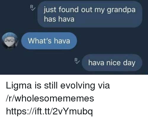 Grandpa, Nice, and Via: just found out my grandpa  has hava  What's hava  hava nice day Ligma is still evolving via /r/wholesomememes https://ift.tt/2vYmubq