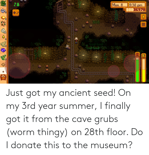 Summer, Ancient, and Got: Just got my ancient seed! On my 3rd year summer, I finally got it from the cave grubs (worm thingy) on 28th floor. Do I donate this to the museum?
