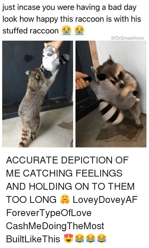 Bad, Bad Day, and Memes: just incase you were having a bad day  look how happy this raccoon is with his  stuffed raccoon fi  @DrSmashlove ACCURATE DEPICTION OF ME CATCHING FEELINGS AND HOLDING ON TO THEM TOO LONG 🤗 LoveyDoveyAF ForeverTypeOfLove CashMeDoingTheMost BuiltLikeThis 😍😂😂😂