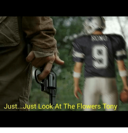 Memes, Flower, and Flowers: Just. Just Look At The Flowers Tony