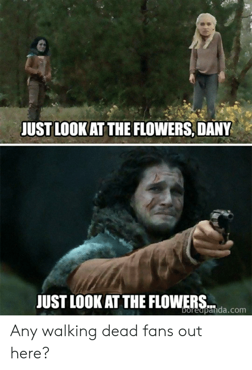 just look at the flowers: JUST LOOK AT THE FLOWERS, DANY  JUST LOOK AT THE FLOWEpanda.com Any walking dead fans out here?