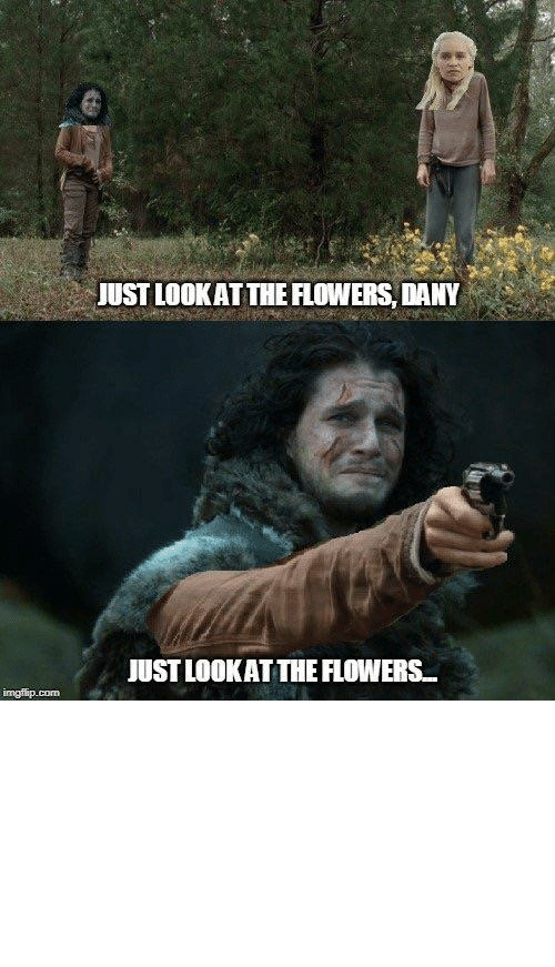 just look at the flowers: JUST LOOK AT THE FLOWERS, DANY  JUST LOOKAT THE FLOWERS.  imgilip.com Look at the flowers Dany...Just look at the flowers...(was going to make, but found someone already had)
