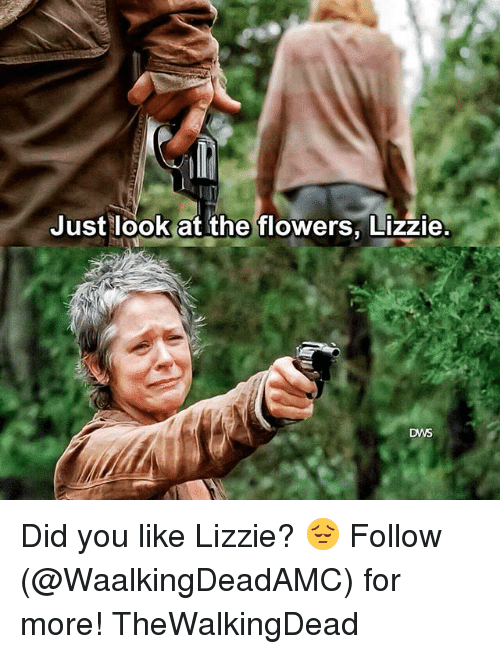 Memes, Flowers, and 🤖: Just look at the flowers, Lizzie.  DWS Did you like Lizzie? 😔 Follow (@WaalkingDeadAMC) for more! TheWalkingDead
