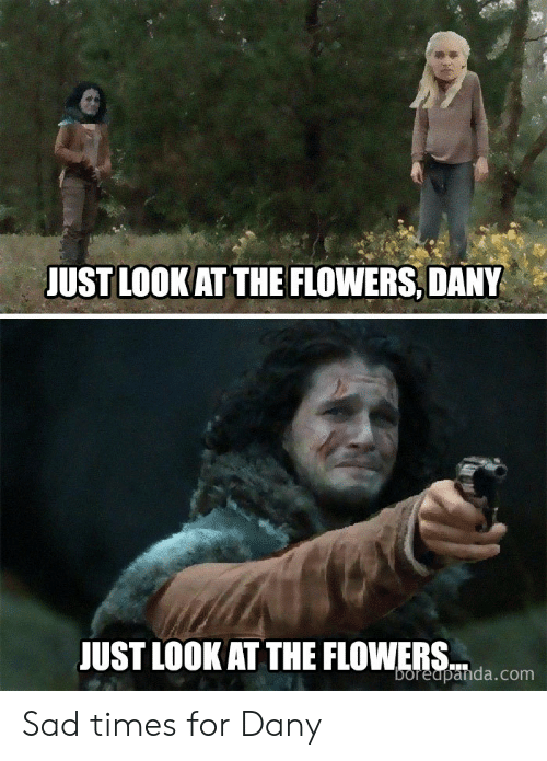 just look at the flowers: JUST LOOKAT THE FLOWERS, DANY  JUST LOOK AT THE FLOWERS  boreapanda.com Sad times for Dany