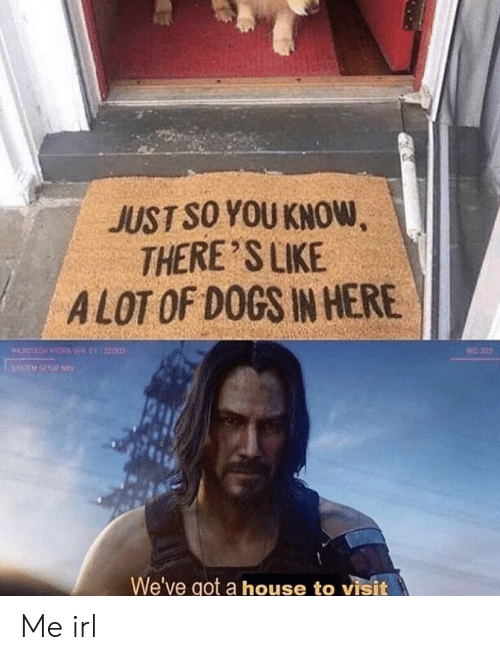 Dogs, House, and Irl: JUST SO YOU KNOW,  THERE'S LIKE  ALOT OF DOGS IN HERE  OCH HY VER2122000  202  We've got a house to visit Me irl