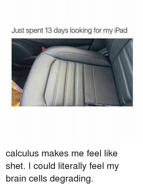 my ipad: Just spent 13 days looking for my iPad calculus makes me feel like shet. I could literally feel my brain cells degrading.