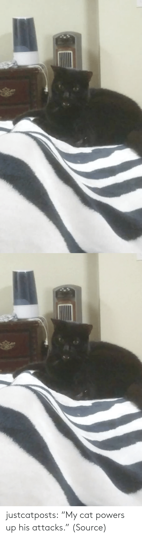 "Funny: justcatposts:  ""My cat powers up his attacks."" (Source)"