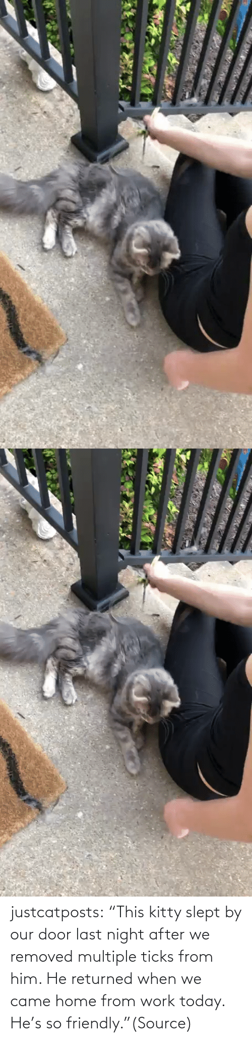 "Múltiple: justcatposts:  ""This kitty slept by our door last night after we removed multiple ticks from him. He returned when we came home from work today. He's so friendly.""(Source)"