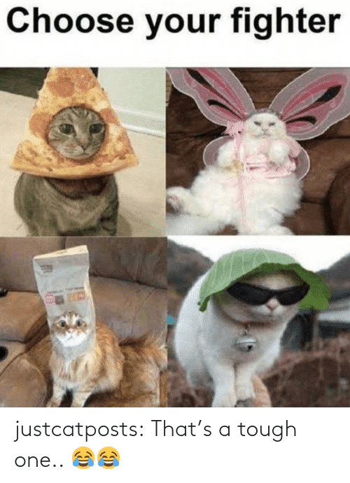 Thats: justcatposts:  That's a tough one.. 😂😂