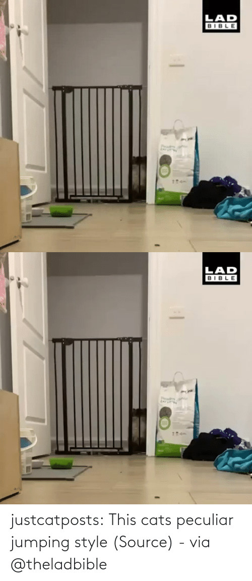 Watch: justcatposts:  This cats peculiar jumping style (Source) - via @theladbible
