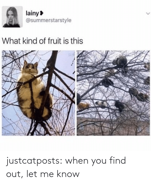 Find Out: justcatposts:  when you find out, let me know
