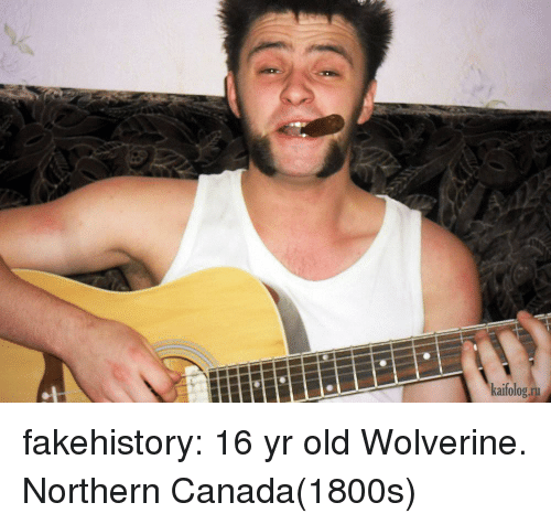 Tumblr, Wolverine, and Blog: kaifolog.ru fakehistory:  16 yr old Wolverine. Northern Canada(1800s)