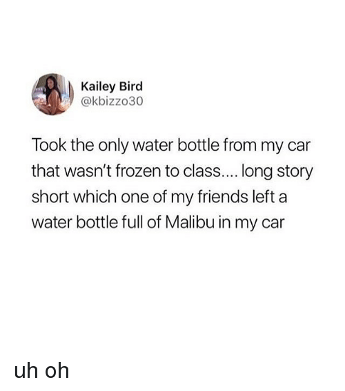malibu: Kailey Bird  @kbizzo30  Took the only water bottle from my car  that wasn't frozen to class.... long story  short which one of my friends left a  water bottle full of Malibu in my car uh oh