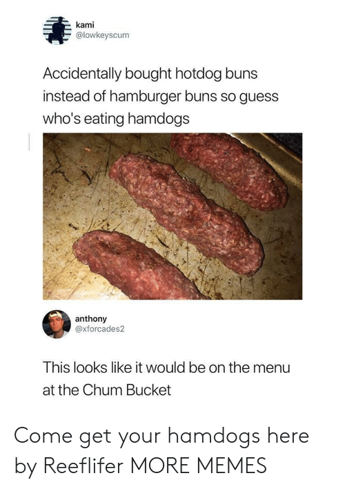kami: kami  @lowkeyscum  Accidentally bought hotdog buns  instead of hamburger buns so guess  who's eating hamdogs  anthony  @xforcades2  This looks like it would be on the menu  at the Chum Bucket Come get your hamdogs here by Reeflifer MORE MEMES