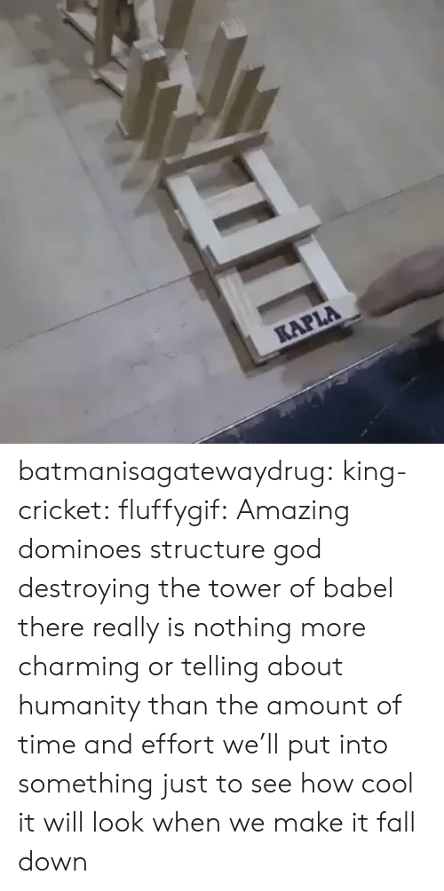 Effort: KAPLA batmanisagatewaydrug: king-cricket:  fluffygif:  Amazing dominoes structure    god destroying the tower of babel  there really is nothing more charming or telling about humanity than the amount of time and effort we'll put into something just to see how cool it will look when we make it fall down