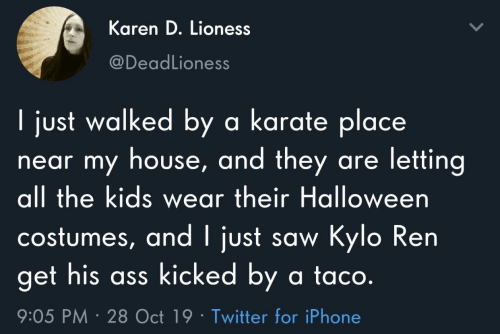 Halloween Costumes: Karen D. Lioness  @DeadLioness  I just walked by a karate place  near my house, and they are letting  all the kids wear their Halloween  costumes, and I just saw Kylo Ren  get his ass kicked by a ta co.  9:05 PM 28 Oct 19 Twitter for iPhone