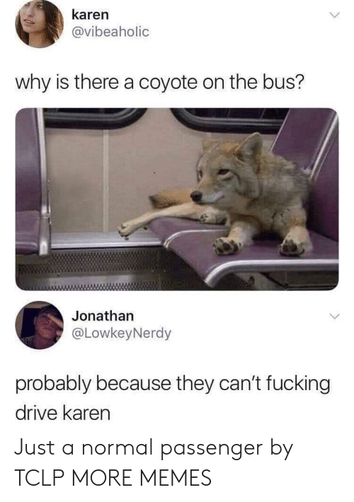Dank, Fucking, and Memes: karen  @vibeaholic  why is there a coyote on the bus?  Jonathan  @LowkeyNerdy  probably because they can't fucking  drive karen Just a normal passenger by TCLP MORE MEMES