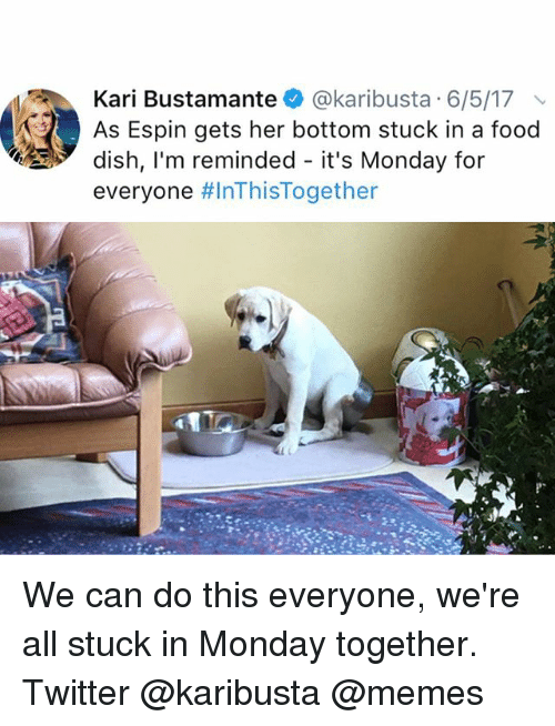 We Can Do This: Kari Bustamante @karibusta 6/5/17  As Espin gets her bottom stuck in a food  dish, l'm reminded - it's Monday for  everyone We can do this everyone, we're all stuck in Monday together. Twitter @karibusta @memes