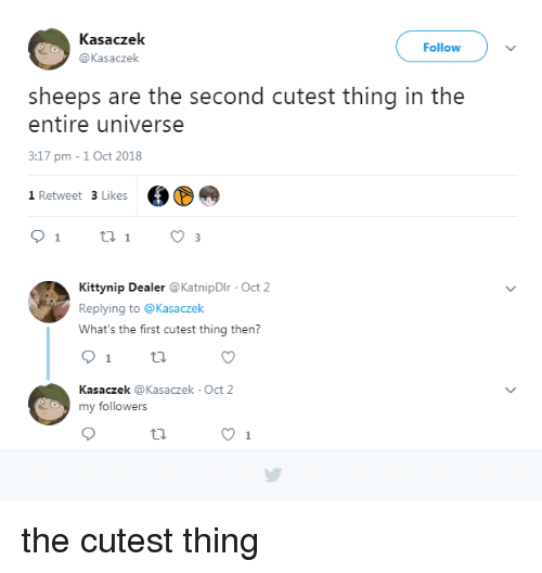 Universe, First, and Thing: Kasaczek  @Kasaczek  Follow  sheeps are the second cutest thing in the  entire universe  3:17 pm -1 Oct 2018  1 Retweet 3 Likes  Kittynip Dealer @KatnipDIr Oct 2  Replying to @Kasaczek  What's the first cutest thing then?  Kasaczek @Kasaczek Oct 2  my followers the cutest thing