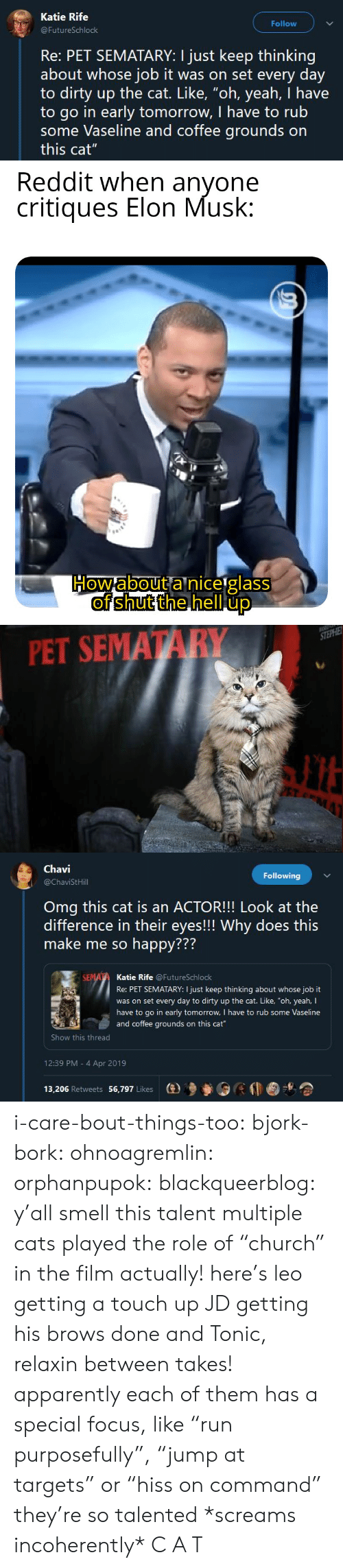 "Go In: Katie Rife  Follow  FutureSchlock  Re: PET SEMATARY: I just keep thinking  about whose job it was on set every day  to dirty up the cat. Like, ""oh, yeah, I have  to go in early tomorrow, I have to rub  some Vaseline and coffee grounds on  this cat""   PET SEMATARY   Chavi  @ChaviStHill  Following  Omg this cat is an ACTOR!!! Look at the  difference in their eyes!!! Why does this  make me so happy???  772  Katie Rife @FutureSchlock  Re: PET SEMATARY: I just keep thinking about whose job it  was on set every day to dirty up the cat. Like, ""oh, yeah, I  have to go in early tomorrow, I have to rub some Vaseline  and coffee grounds on this cat  Show this thread  12:39 PM - 4 Apr 2019  13,206 Retweets 56,797 Likes  (e)乡參0 i-care-bout-things-too:  bjork-bork:  ohnoagremlin:  orphanpupok:  blackqueerblog: y'all smell this talent  multiple cats played the role of ""church"" in the film actually! here's leo getting a touch up JD getting his brows done and Tonic, relaxin between takes!   apparently each of them has a special focus, like ""run purposefully"", ""jump at targets"" or ""hiss on command"" they're so talented     *screams incoherently* C A T"