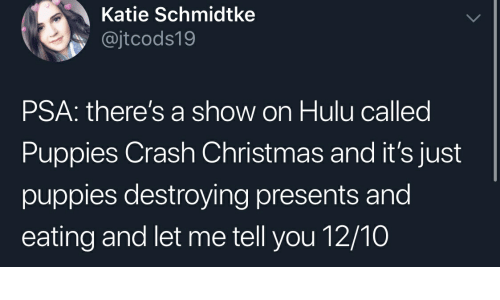 Christmas, Hulu, and Puppies: Katie Schmidtke  @jtcods19  PSA: there's a show on Hulu called  Puppies Crash Christmas and it's just  puppies destroying presents and  eating and let me tell you 12/10