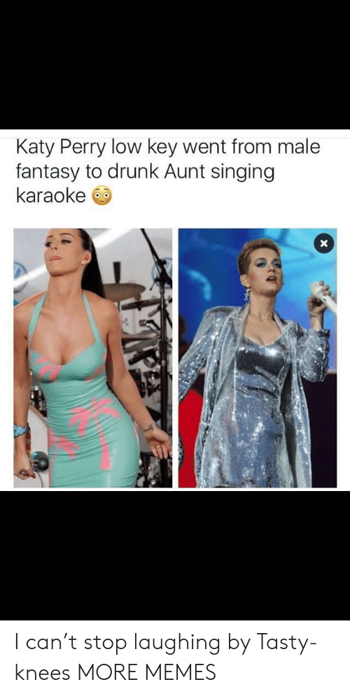 Karaoke: Katy Perry low key went from male  fantasy to drunk Aunt singing  karaoke I can't stop laughing by Tasty-knees MORE MEMES