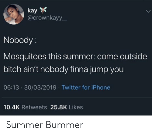 Bitch, Iphone, and Twitter: kay  @crownkayy  Nobody:  Mosquitoes this summer: come outside  bitch ain't nobody finna jump you  06:13 30/03/2019 Twitter for iPhone  10.4K Retweets 25.8K Likes Summer Bummer