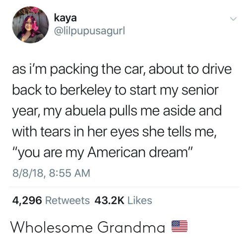 "kaya: kaya  @lilpupusagurl  as i'm packing the car, about to drive  back to berkeley to start my senior  year, my abuela pulls me aside and  with tears in her eyes she tells me,  ""you are my American dream""  8/8/18, 8:55 AM  4,296 Retweets 43.2K Likes Wholesome Grandma 🇺🇸"