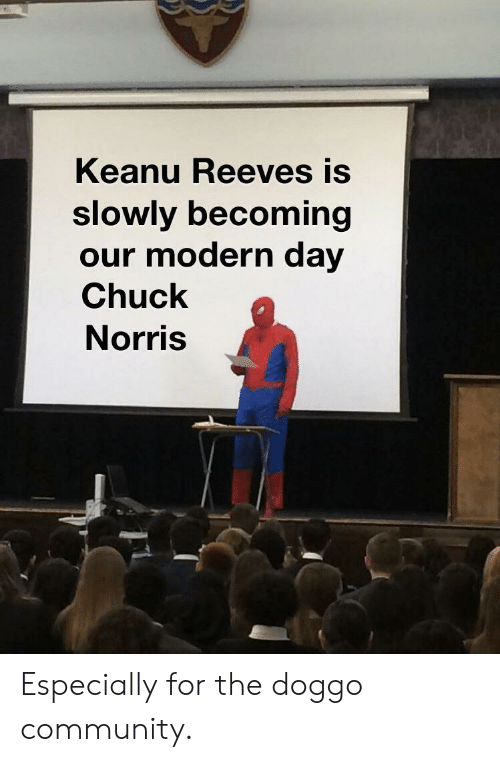 Chuck Norris, Community, and Doggo: Keanu Reeves is  slowly becoming  our modern day  Chuck  Norris Especially for the doggo community.