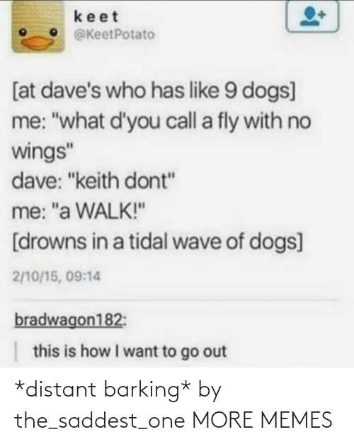 "wave: keet  @KeetPotato  [at dave's who has like 9 dogs]  me: ""what d'you call a fly with no  wings""  dave: ""keith dont""  me: ""a WALK!""  [drowns in a tidal wave of dogs]  2/10/15, 09:14  bradwagon182:  this is how I want to go out *distant barking* by the_saddest_one MORE MEMES"
