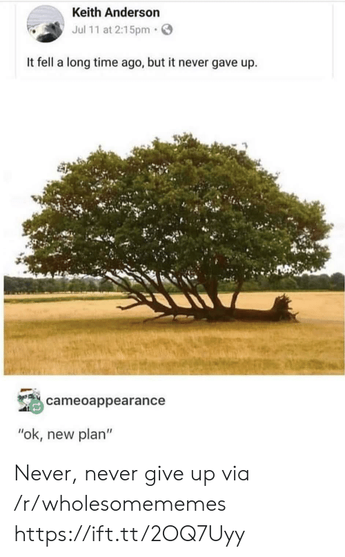 """Time, Never, and Via: Keith Anderson  Jul 11 at 2:15pm  It fell a long time ago, but it never gave up  cameoappearance  """"ok, new plan"""" Never, never give up via /r/wholesomememes https://ift.tt/2OQ7Uyy"""