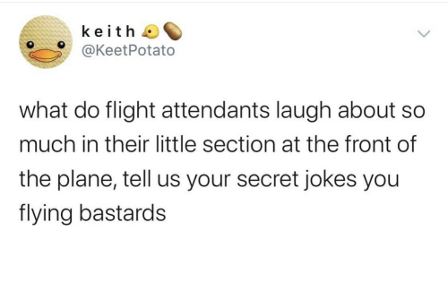plane: keith  @KeetPotato  what do flight attendants laugh about  much in their little section at the front of  the plane, tell us your secret jokes you  flying bastards
