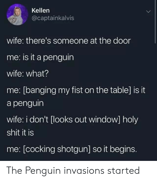 it begins: Kellen  @captainkalvis  wife: there's someone at the door  me: is it a penguin  wife: what?  me: [banging my fist on the table] is it  a penguin  wife: i don't [looks out window] holy  shit it is  me: [cocking shotgun] so it begins. The Penguin invasions started
