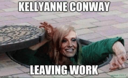 Conway, Work, and Leaving: KELLYANNE CONWAY  LEAVING WORK  nc 201r