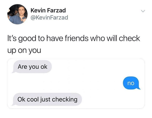 are you ok: Kevin Farzad  @KevinFarzad  It's good to have friends who will check  up on you  Are you ok  no  Ok cool just checking
