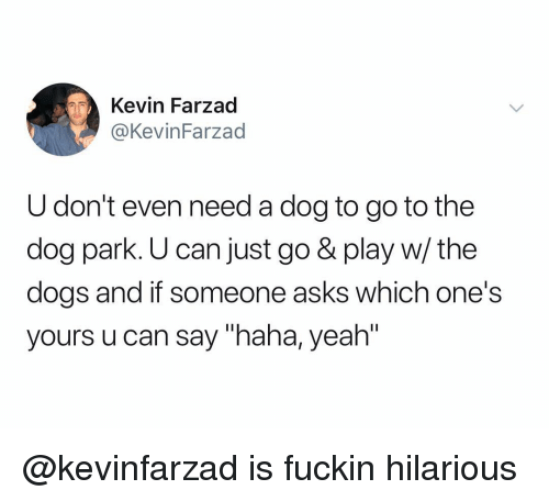 "Dogs, Yeah, and Dank Memes: Kevin Farzad  @KevinFarzad  U don't even need a dog to go to the  dog park. U can just go & play w/ the  dogs and if someone asks which one's  yours u can say ""haha, yeah"" @kevinfarzad is fuckin hilarious"