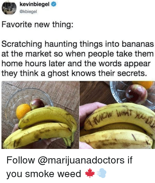 Haunting: kevinbiegel  @kbiegel  Favorite new thing:  Scratching haunting things into bananas  at the market so when people take them  home hours later and the words appear  they think a ghost knows their secrets. Follow @marijuanadoctors if you smoke weed 🍁💨