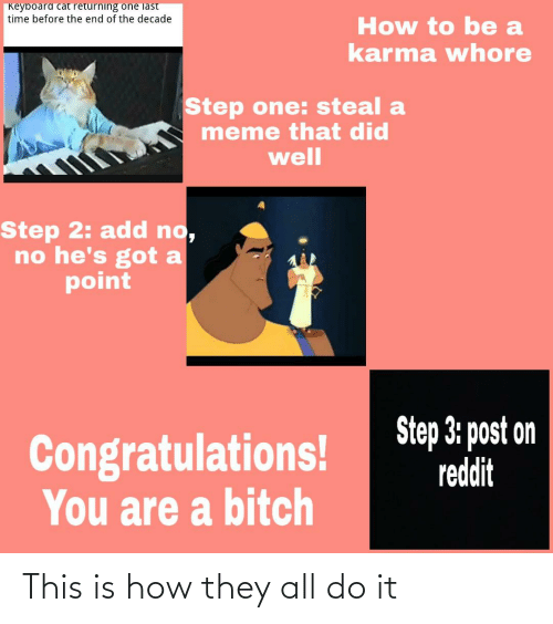 Step 3: Keyboard cat returning one last  time before the end of the decade  How to be a  karma whore  Step one: steal a  meme that did  well  Step 2: add no,  no he's got a  point  Step 3: post on  reddit  Congratulations!  You are a bitch This is how they all do it
