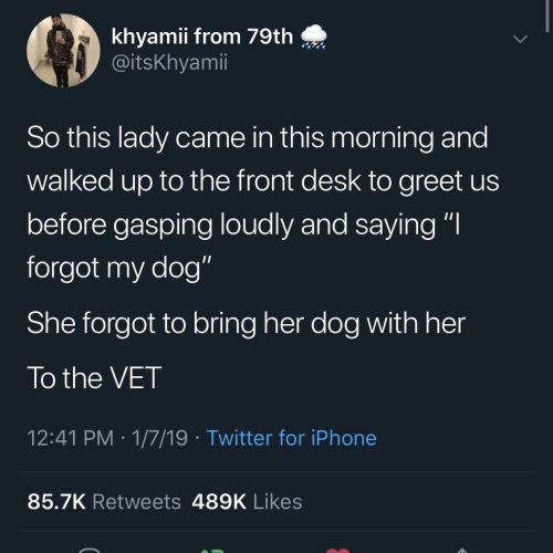 """Iphone, Twitter, and Desk: khyamii from 79th  @itsKhyamii  So this lady came in this morning and  walked up to the front desk to greet us  before gasping loudly and saying """"I  forgot my dog""""  She forgot to bring her dog with her  To the VET  12:41 PM 1/7/19 Twitter for iPhone  85.7K Retweets 489K Likes"""