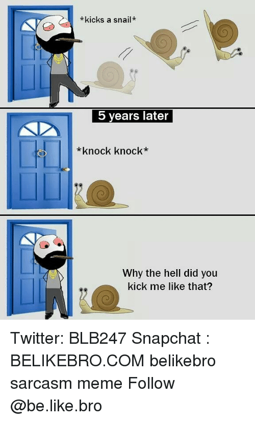 Be Like, Meme, and Memes: *kicks a snail*  5 years later  *knock knock*  Why the hell did you  kick me like that? Twitter: BLB247 Snapchat : BELIKEBRO.COM belikebro sarcasm meme Follow @be.like.bro